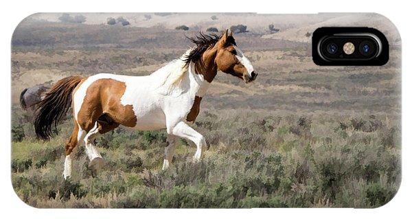 Wild Mustang Stallion On The Move In Sand Wash Basin IPhone Case
