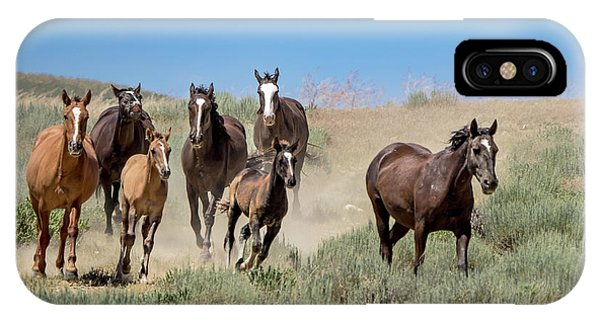 wild mustangs on the run to the water hole in Sand Wash Basin IPhone Case