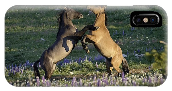 Wild Mustangs Playing 1 IPhone Case