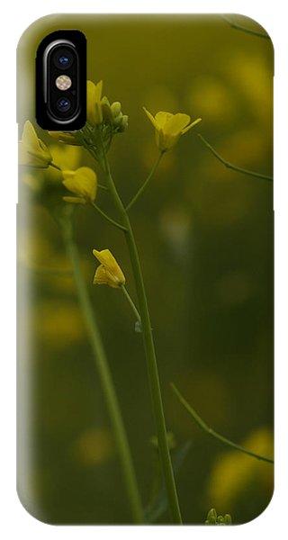 Mustard iPhone Case - Wild Mustard by Bill Gallagher