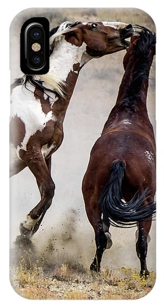 Wild Stallion Battle - Picasso And Dragon IPhone Case