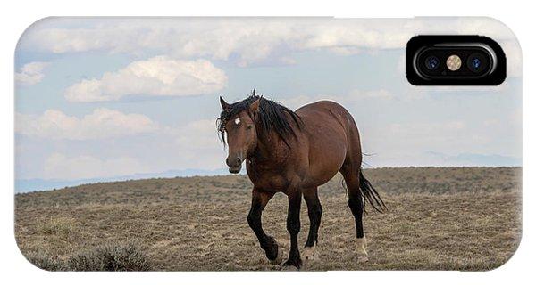 Wild Stallion IPhone Case