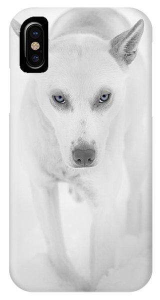 Sled Dog iPhone Case - Wild Staring Eyes by Nigel Jones