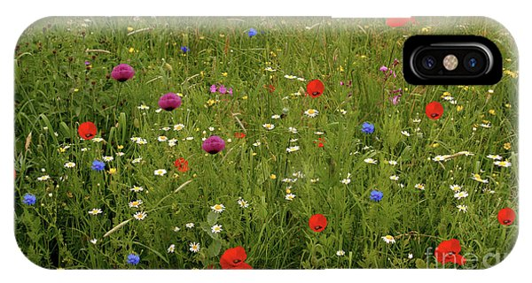 Wild Summer Meadow IPhone Case