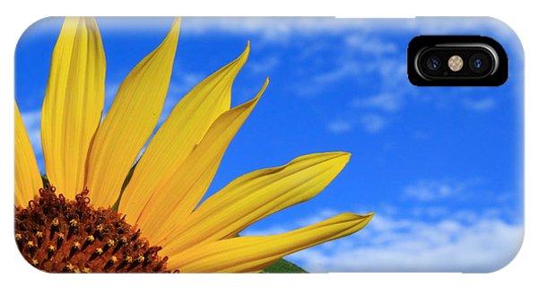 Wild Sunflower IPhone Case