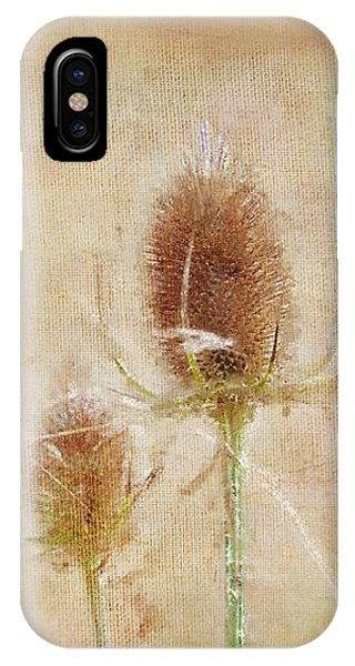 Wild Teasel IPhone Case
