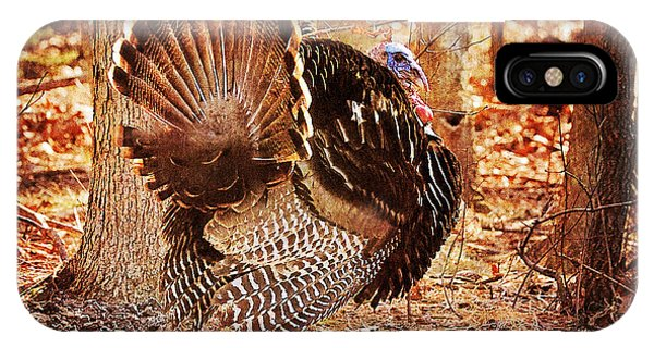 IPhone Case featuring the photograph Wild Turkey by Angel Cher