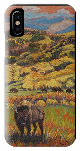 Wild West Splendor IPhone Case