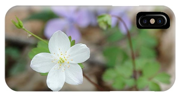 Wild Woodland Phlox IPhone Case
