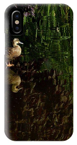 Wilderness Duck IPhone Case