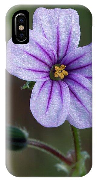 Wilderness Flower 3 IPhone Case