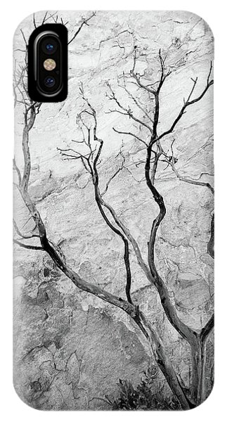 IPhone Case featuring the photograph Wildfire Manzanita by Tim Newton