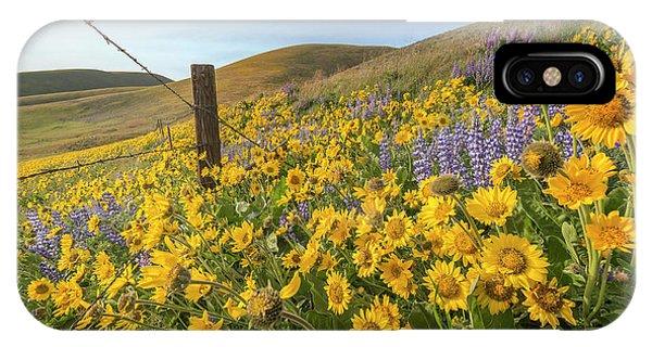 Wildflower Bonanza IPhone Case