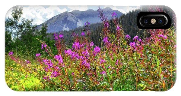 Wildflower Capital IPhone Case