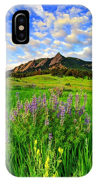 Wildflower Colors IPhone Case