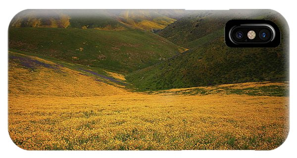 Wildflower Field Up In The Temblor Range At Carrizo Plain National Monument IPhone Case