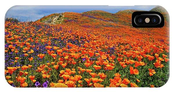 Wildflower Jackpot IPhone Case