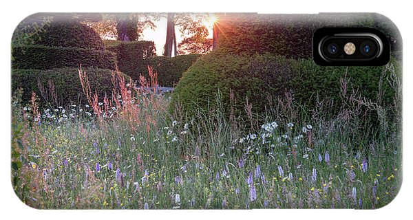 Wildflower Meadow At Sunset, Great Dixter IPhone Case