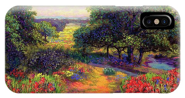 Walk iPhone Case - Wildflower Meadows Of Color And Joy by Jane Small