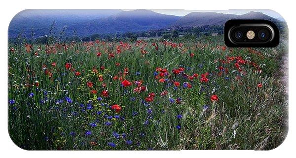 Wildflower Path IPhone Case