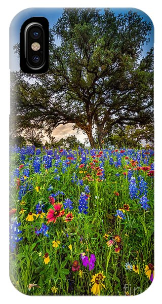 Rural America iPhone Case - Wildflower Tree by Inge Johnsson