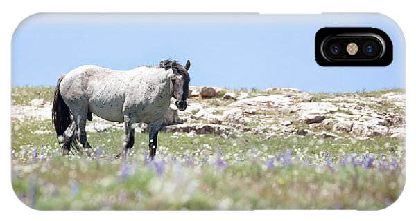 Wildflowers And Mustang IPhone Case