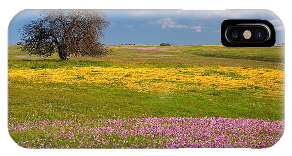 Wildflowers And Oak Tree - Spring In Central California IPhone Case
