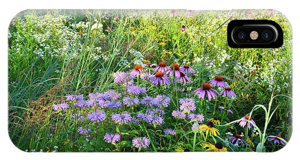 Wildflowers In Moraine Hills State Park IPhone Case