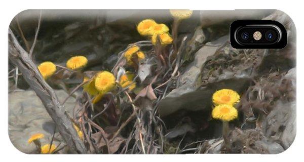 Wildflowers In Rocks IPhone Case