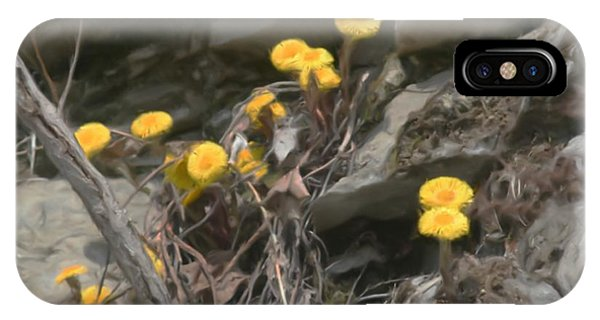 Wildflowers In Rocks IPhone Case