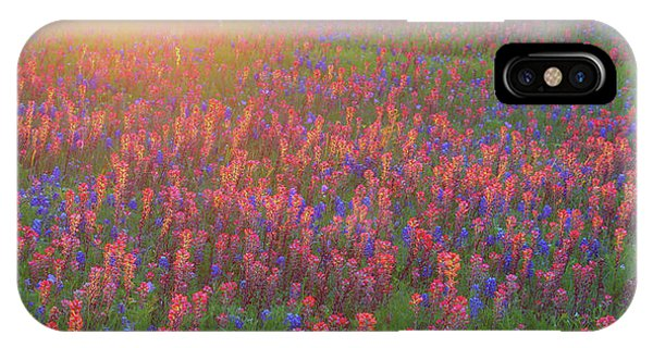 Wildflowers In Texas IPhone Case