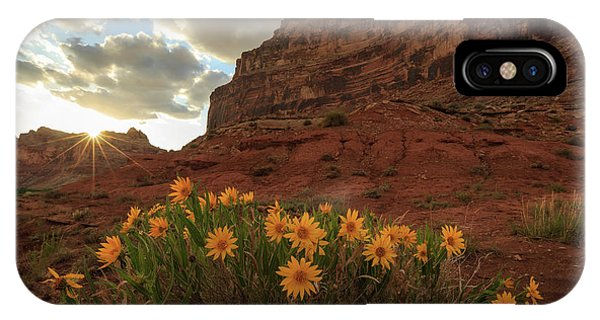 Wildflowers In The Swell. Phone Case by Johnny Adolphson