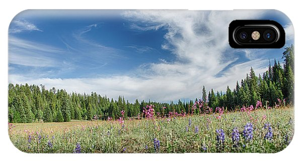 Wildflowers Reach For The Sky IPhone Case