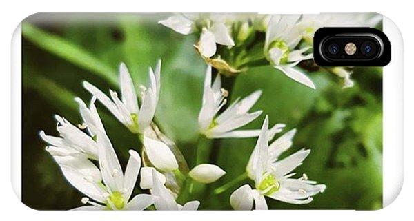 #wildgarlic #flower #woodland #walks Phone Case by Natalie Anne