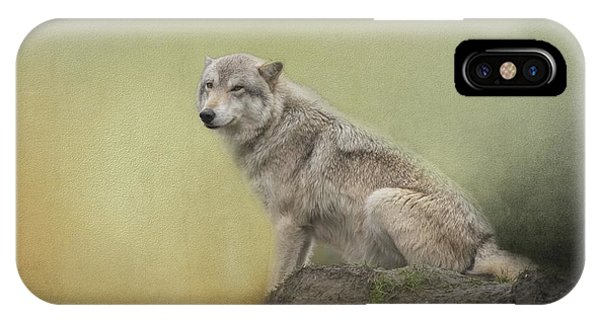 Wildlife Alaska IPhone Case