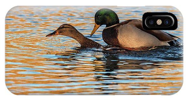 Wildlife Love Ducks  IPhone Case