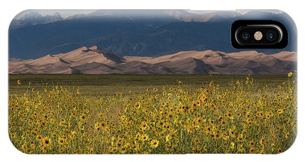 Sangre De Cristo iPhone Case - Wild Sunflowers Shine In The Grasslands Of The Great Sand Dunes N by Bridget Calip