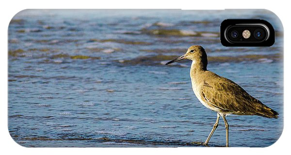 Willet 2 IPhone Case