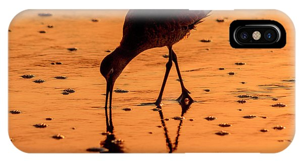 IPhone Case featuring the photograph Willet On Sunrise Surf by Steven Sparks
