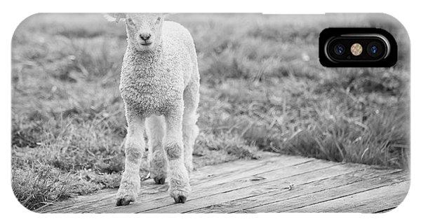Williamsburg Lamb IPhone Case