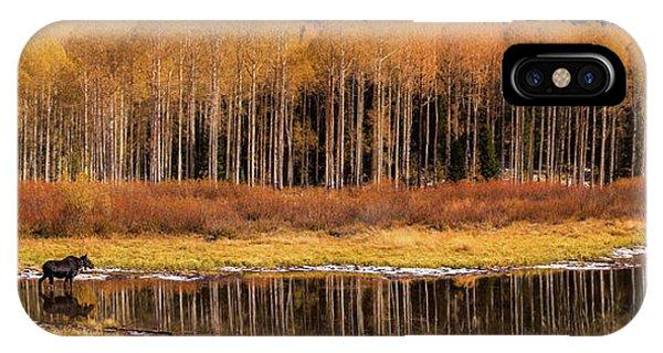 Willow Lake Pano IPhone Case