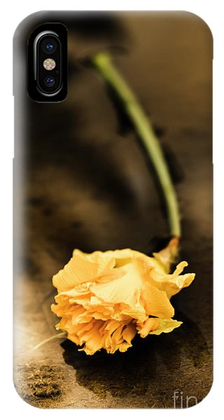 Left iPhone Case - Wilting Puddle Flower by Jorgo Photography - Wall Art Gallery