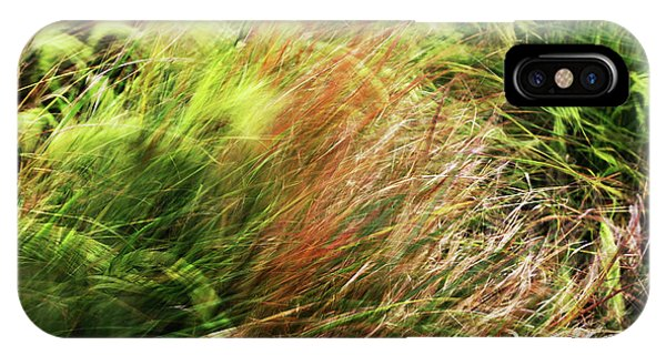 Windblown Grasses IPhone Case