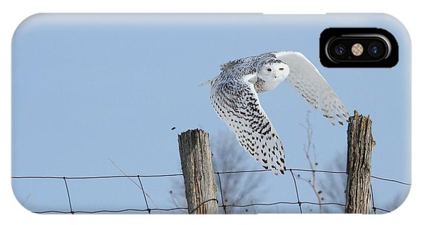 Windswept Glory IPhone Case