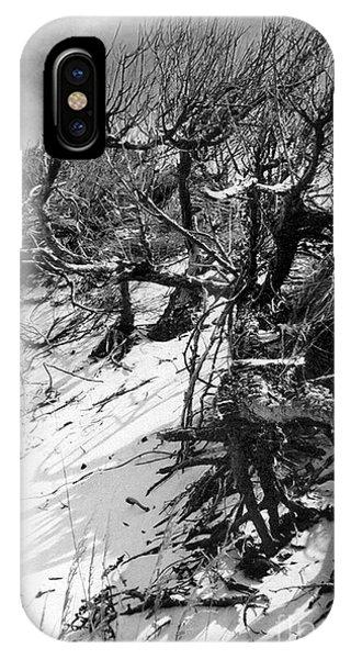 Windswept Trees  IPhone Case