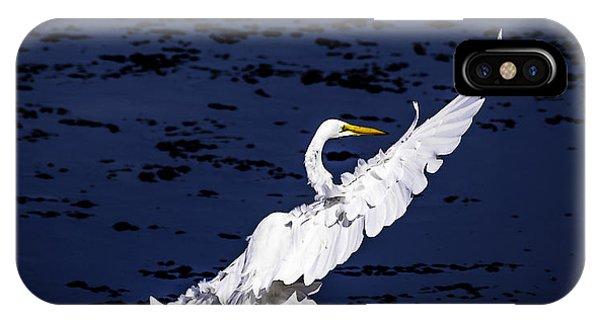Windy Flight IPhone Case