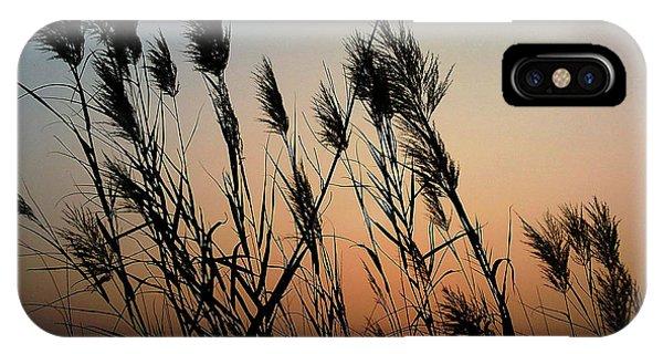 Windy Sunset IPhone Case