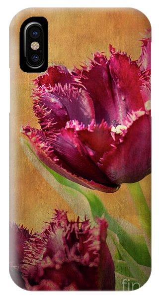 Wine Dark Tulips From My Garden IPhone Case
