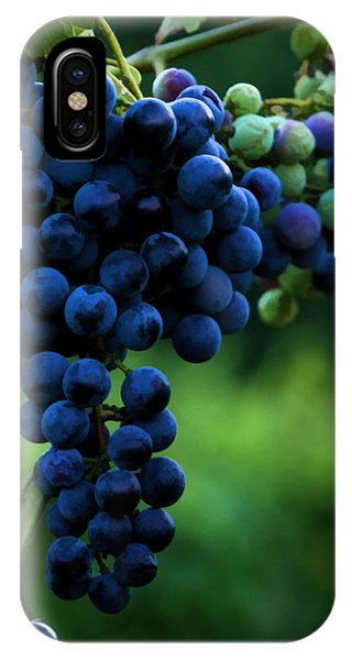 Wine On A Vine IPhone Case
