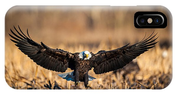 IPhone Case featuring the photograph Wing Span by Jeff Phillippi